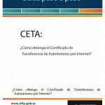 como completar el formulario CETA de la afip guía
