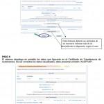 completar el formulario ceta afip pdf