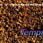 manual de usuario fiat tempra