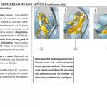 manuales de autos Renault